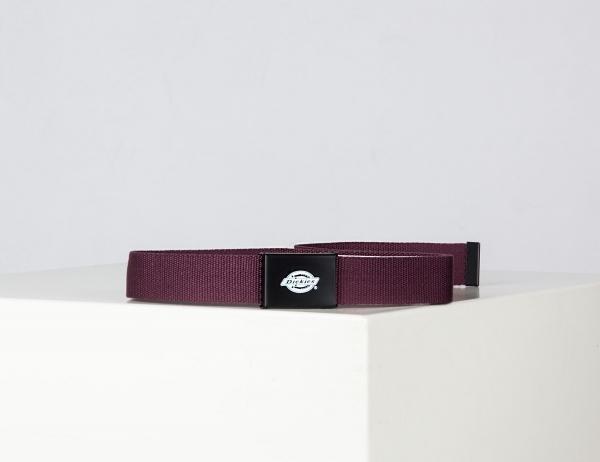 Dickies Orcutt Webbing Belt