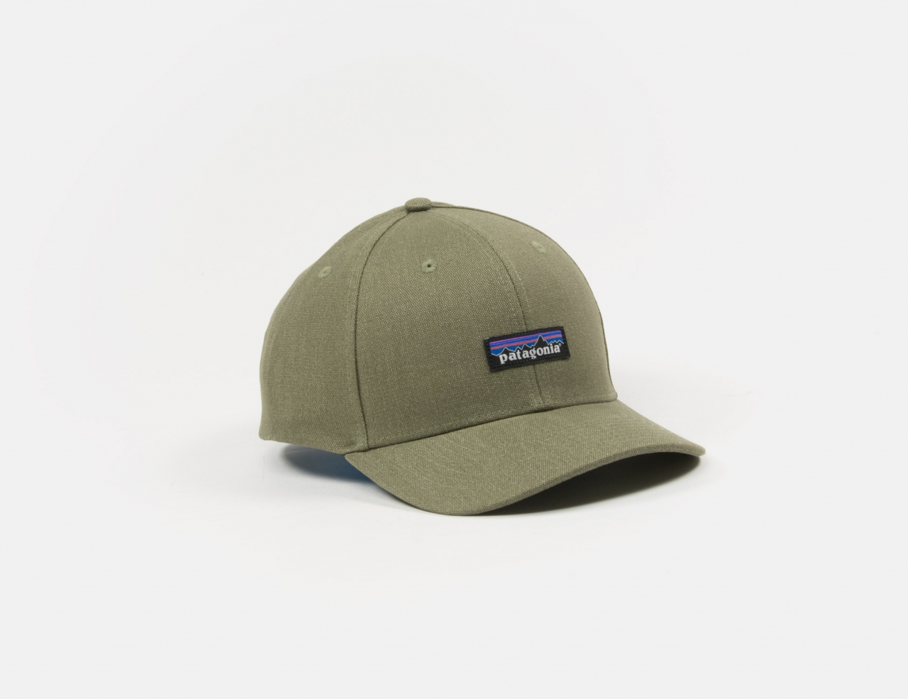 Patagonia Tin Shed Cap - Fatigue Green